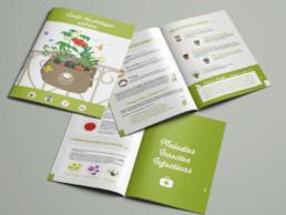 Brochure-Mon-Petit-COin-VErt-creation-graphique-saintpierre allevard-38