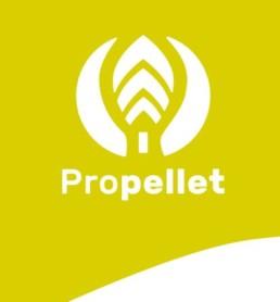 Propellet-granule-logo-Chambery-savoie-graphiste-professionnel-bd