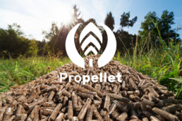 graphiste-logo-chambery-picopico-client-propellet