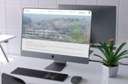 picopico-creation-site-internet-theys-gresivaudan-actae-conseil